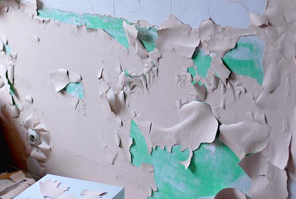 mur rose vert