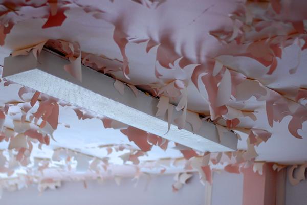 plafond qui pele rose