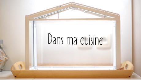 mini serre deco cuisine