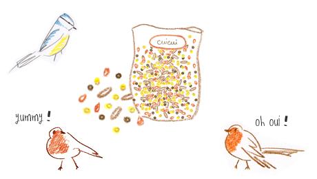 tutoriel diy boules de graisse pour les oiseaux