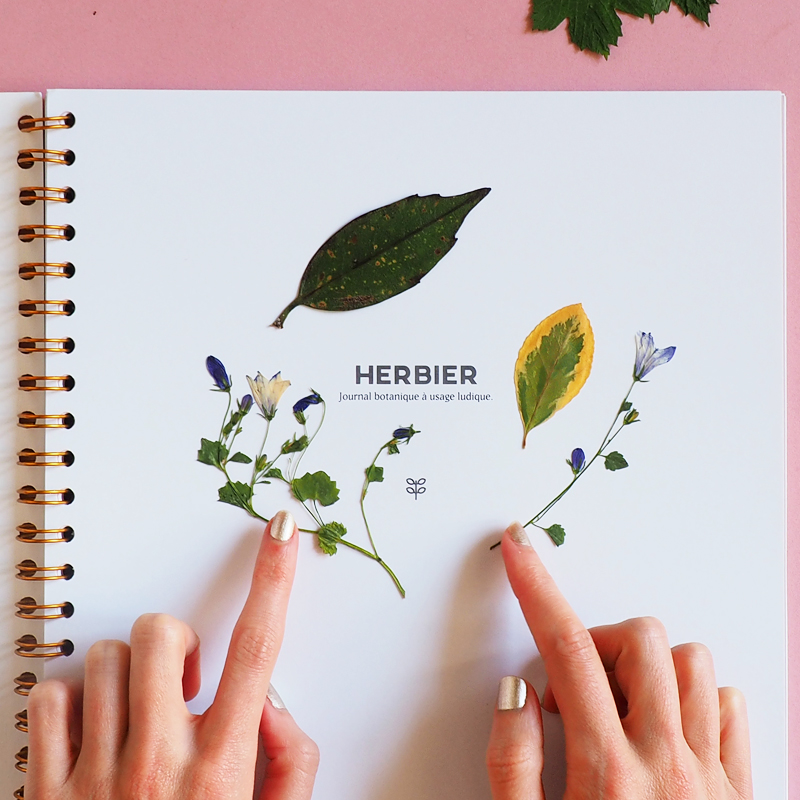 Herbier specimen paris 01