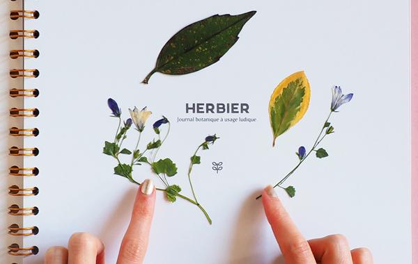 herbier journal botanique