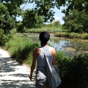 parc ornithologique arcachon